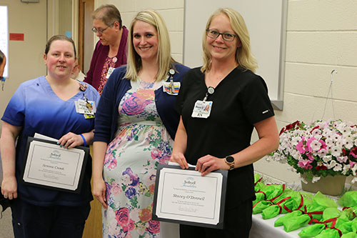 From left, Ann Martin, Nurse of the Year; Sarah Anderson, Nursing Support Person of the Year; and Ronda McMullin, DAISY Award winner